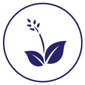 Agroindustriales